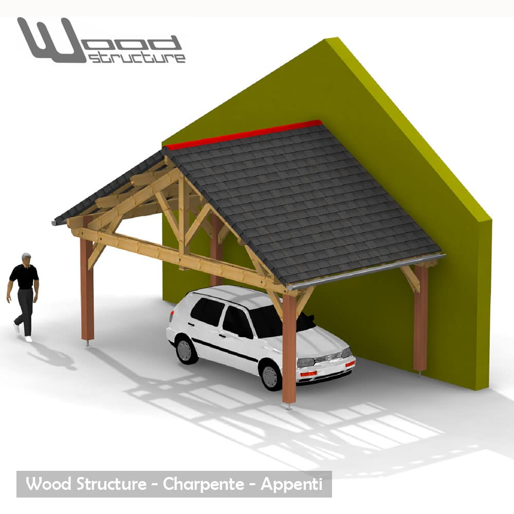 Abris 2 pans charpente bois wood structure for Voiture pret garage