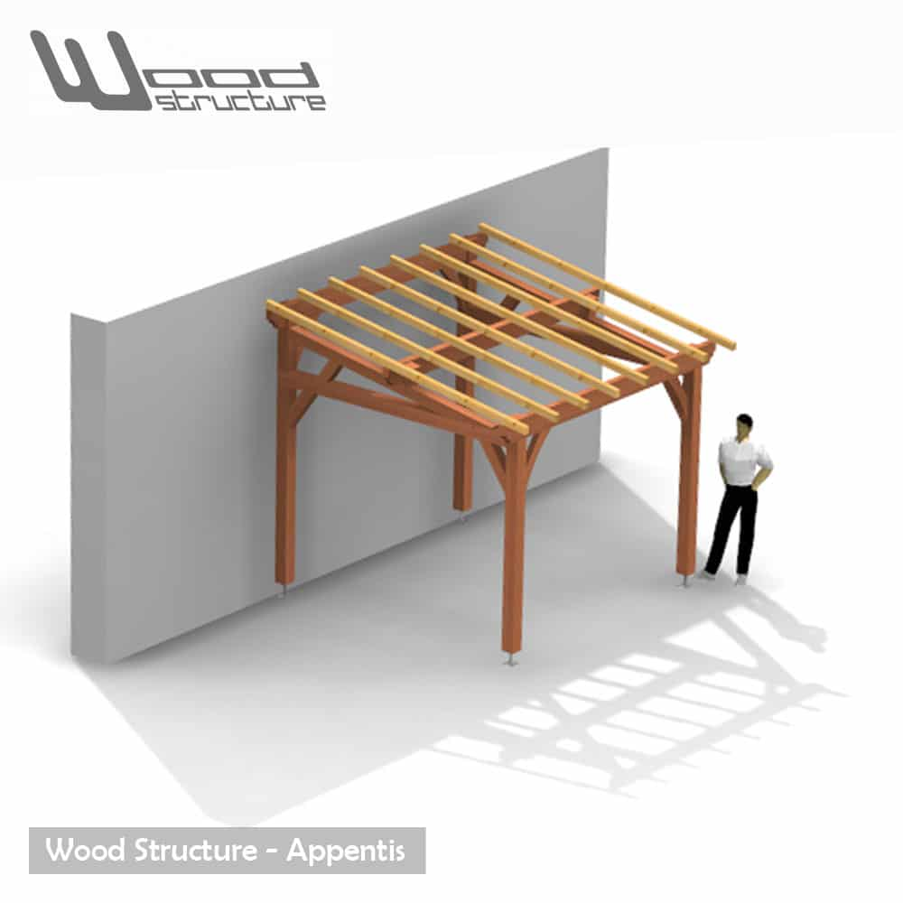 Appentis 1 pan m wood structure - Appenti bois kit ...