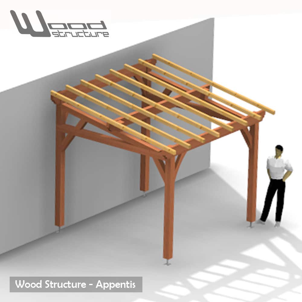 Appentis 1 pan m wood structure for Structure de bois
