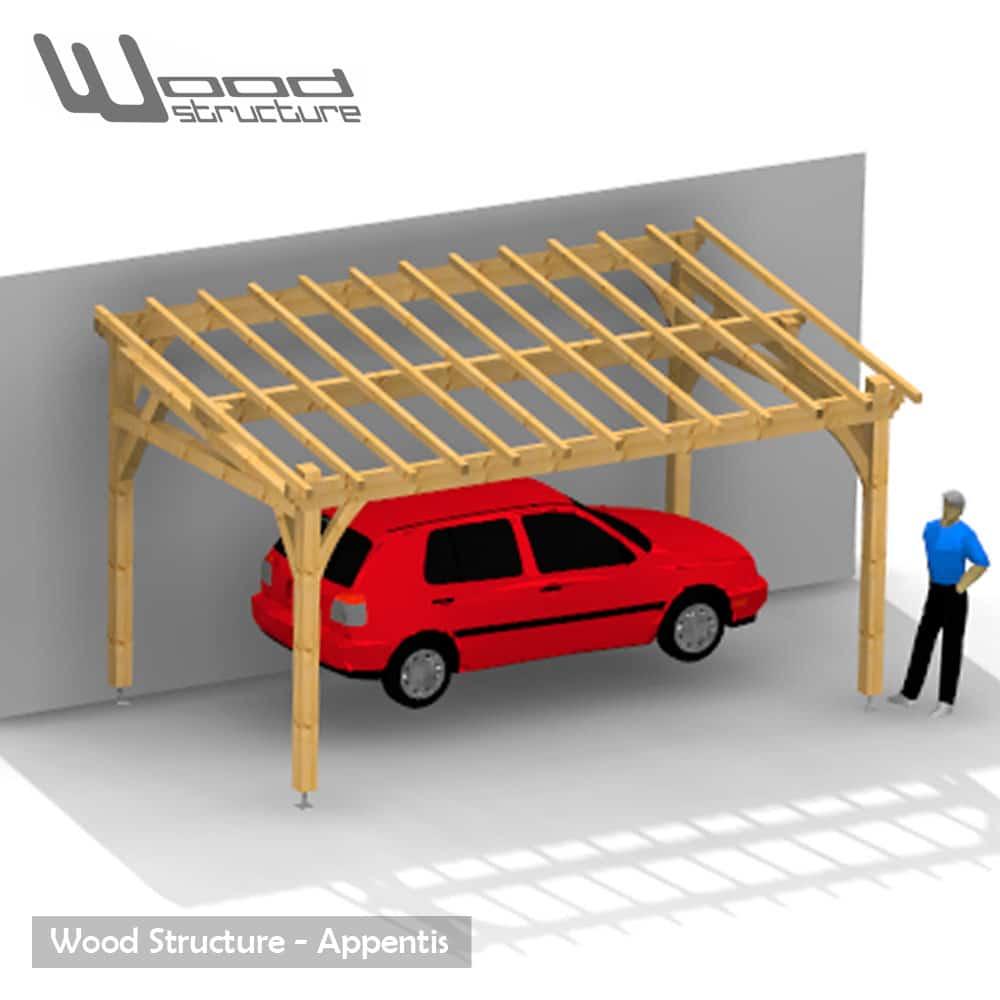 Célèbre Appentis 1 Pan L - Wood Structure WA23