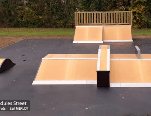 Skatepark de Tuffé (72)