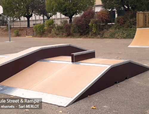 Skatepark de Fontaines-les-Dijon (21)