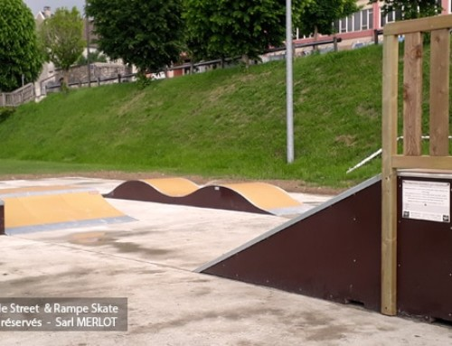 Skatepark de Cuchery (51)